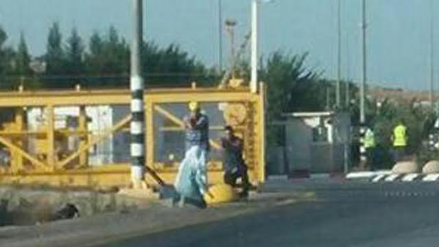"""Adolescente palestina a soldados israelíes: """"Vine a morir"""""""