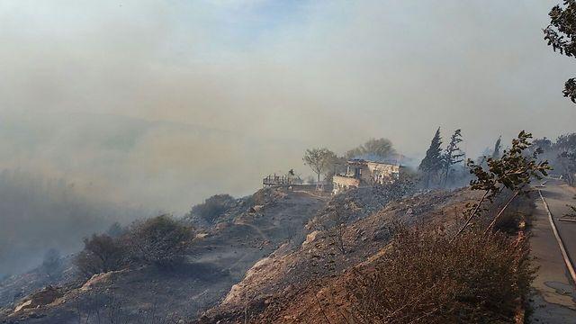 La recuperación posterior a los incendios en Israel podría durar 30 años