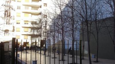 da_de_israel_trees-635×357