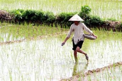 granjeros_vietnam