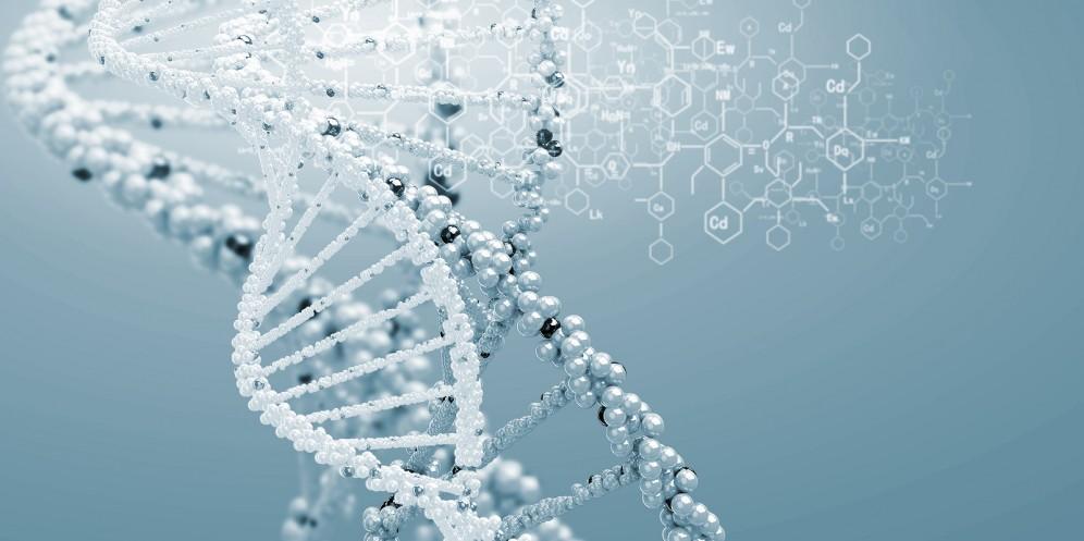 adn genetica