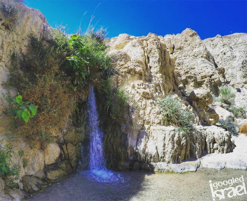 ein gedi reserva natural