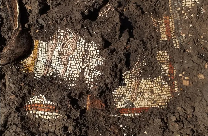 Mosaico Golán