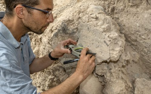 Yoav-Vaknin-of-TAU-at-the-site.-Photographer-Shai-Halevi-Israel-Antiquities-Authority-1024×640