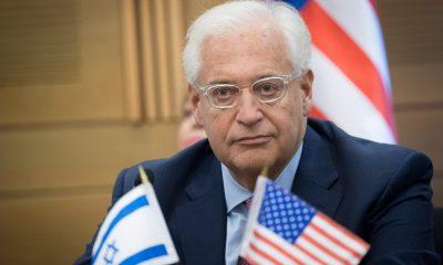David-Friedman
