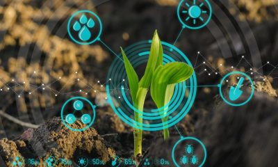 smart-agriculture-plant-farming-data-reduced-900×570