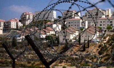 asentamientos en israel1