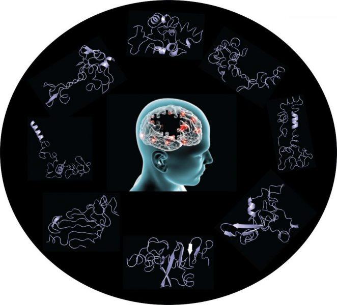 Illustration_Credit Penn State College of Medicine.