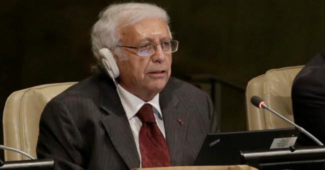 """El embajador ecuatoriano ante la ONU abogó por la creación de un """"Estado independiente de Palestina"""""""