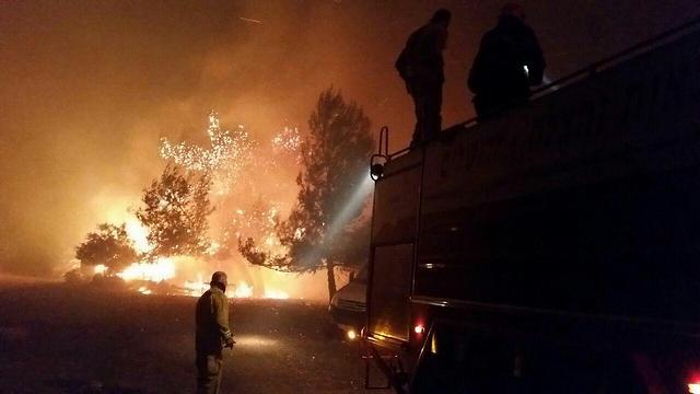 Un palestino fue arrestado por sospecha de haber provocado un incendio en Nataf