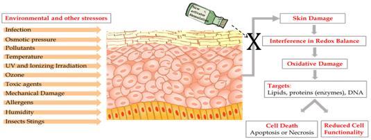 Nanotecnología de la UHJ